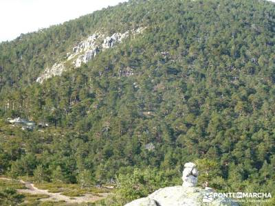 Siete Picos:Senda Herreros,Camino Schmid(Schmidt); actividad navidad;bosque de irati rutas